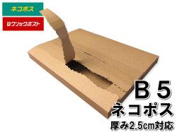 メール便ケース B5 厚み2.5cm ネコポス クリックポスト